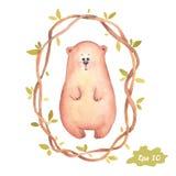 Иллюстрация медведя акварели нарисованная вручную Стоковая Фотография