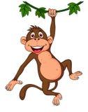 Милый висеть обезьяны иллюстрация вектора