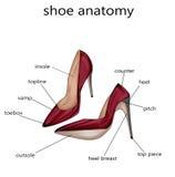 Иллюстрация моды - иллюстрация растра анатомии ботинка иллюстрация вектора
