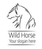 Иллюстрация нарисованная рукой головы дикой лошади Стоковая Фотография