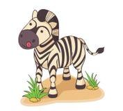 Иллюстрация нарисованная рукой зебры Стоковая Фотография