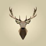 Иллюстрация низкого поли портрета оленей животная абстрактная полигональная стоковые фото