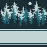 Иллюстрация ночи coniferous пущи. Стоковые Фото