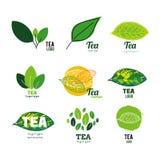 Иллюстрация логотипа магазина чая установленная Стоковая Фотография RF