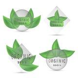 Иллюстрация логотипа для органического Стоковое Изображение RF