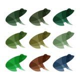 Иллюстрация логотипов лягушек влияние метки современного вектора верхнего слоя ультрамодной Стоковое Фото
