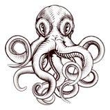 Иллюстрация осьминога Стоковое Изображение RF
