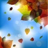 Иллюстрация падения предпосылки листьев вектора осени с задним светом Стоковые Изображения RF