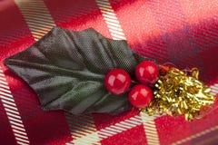 иллюстрация падуба eps рождества 8 над белизной вектора Стоковая Фотография RF