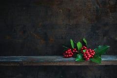 иллюстрация падуба eps рождества 8 над белизной вектора Стоковые Изображения RF