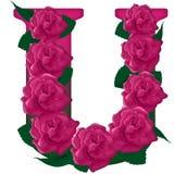 Иллюстрация письма u милая розовая флористическая Стоковое Фото
