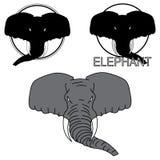 Иллюстрация показывая голову слона Стоковое Изображение RF
