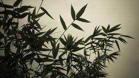 иллюстрация предпосылки bamboo выходит вектор Стоковые Изображения RF