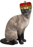Иллюстрация принцессы сиамского кота изолированная Стоковые Фото