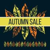 Иллюстрация продажи осени Стоковое Фото
