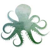 Иллюстрация пурпура голубого зеленого цвета осьминога акварели Стоковое Изображение RF