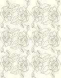 иллюстрация розы предпосылки белые картина безшовная Стоковое Изображение RF
