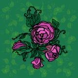 Иллюстрация роз на зеленой предпосылке с листьями Стоковые Изображения RF