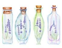 Иллюстрация романтичная и бутылки акварели сказки с нежной лавандой цветут внутрь Стоковое фото RF
