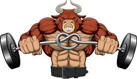 Иллюстрация: сильный сердитый бык Стоковое Изображение