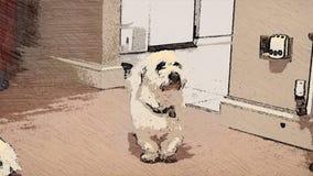 иллюстрация собаки конструкции шаржа предпосылки Стоковые Изображения