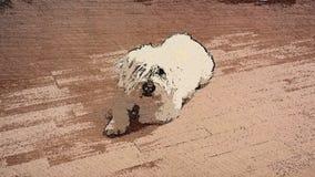 иллюстрация собаки конструкции шаржа предпосылки Стоковое Изображение RF