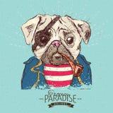 Иллюстрация собаки мопса пирата на голубой предпосылке в векторе Стоковая Фотография