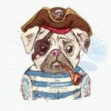 Иллюстрация собаки мопса пирата Стоковое Фото