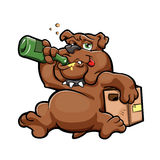 Иллюстрация собаки шаржа пьяной с бутылкой спирта Стоковая Фотография