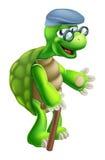 Старший шарж черепахи Стоковая Фотография