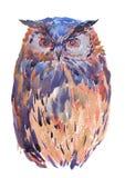 Иллюстрация сычей в методе акварели Стоковое Фото