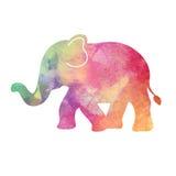 Иллюстрация слона акварели радуги Стоковые Изображения