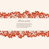 Иллюстрация с ягодой рябины ветвей Стоковая Фотография RF