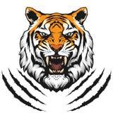 Иллюстрация тигра головная Стоковые Изображения RF
