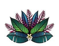 Иллюстрация тропических заводов и цветков Иллюстрация штока
