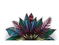 Иллюстрация тропических заводов и цветков Стоковые Изображения RF