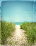Иллюстрация фотоснимка сцены пляжа граничила воду травы пляжа пути Стоковое фото RF