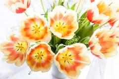 иллюстрация цвета букета имитирует воду вектора тюльпанов Стоковое фото RF