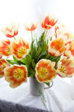 иллюстрация цвета букета имитирует воду вектора тюльпанов стоковые изображения