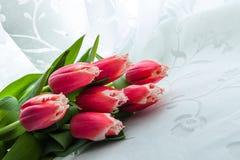 иллюстрация цвета букета имитирует воду вектора тюльпанов Стоковое Изображение