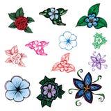 Иллюстрация цветков других цветов Стоковая Фотография