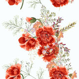 Иллюстрация цветочного узора с маком поля цветет в годе сбора винограда Стоковая Фотография RF