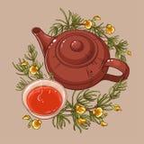 Иллюстрация чая Rooibos иллюстрация штока