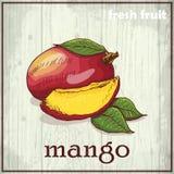 Иллюстрация чертежа руки манго Предпосылка эскиза свежих фруктов Стоковые Изображения