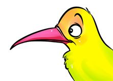 Иллюстрация шаржа птицы желтая иллюстрация штока