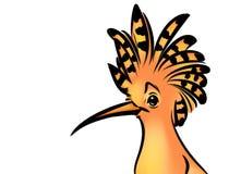 Иллюстрация шаржа удода птицы иллюстрация штока