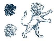 Иллюстрация льва Стоковые Изображения