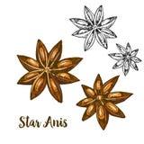 Иллюстрация эскиза полного цвета реалистическая ани звезды иллюстрация вектора