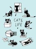 Иллюстрация doodle жизни котов шуточная Котенок нарисованный рукой в различных позициях Стоковая Фотография RF