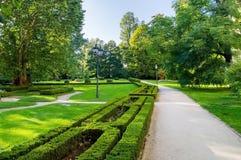 Идя след на зеленом ландшафте парка стоковая фотография
